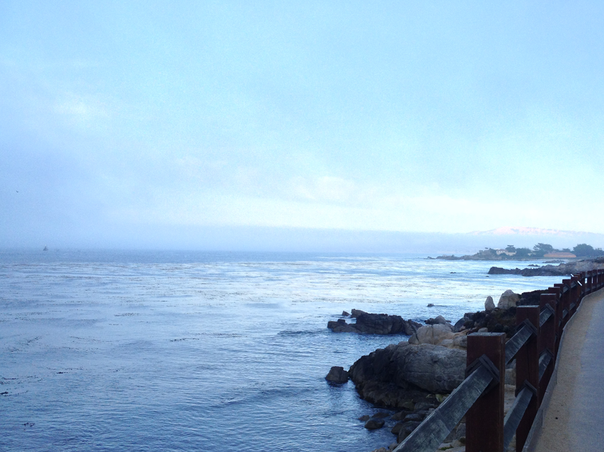 monterey-bay-portrait